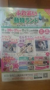 3月20日21日イベントのお知らせ☆